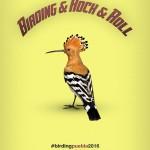 birdingrock
